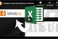 Labeljoy 6 software stampa etichette